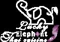 logo-white-big-web